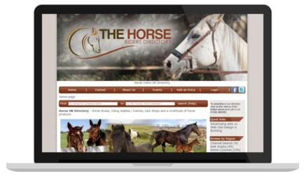 Horse_laptop